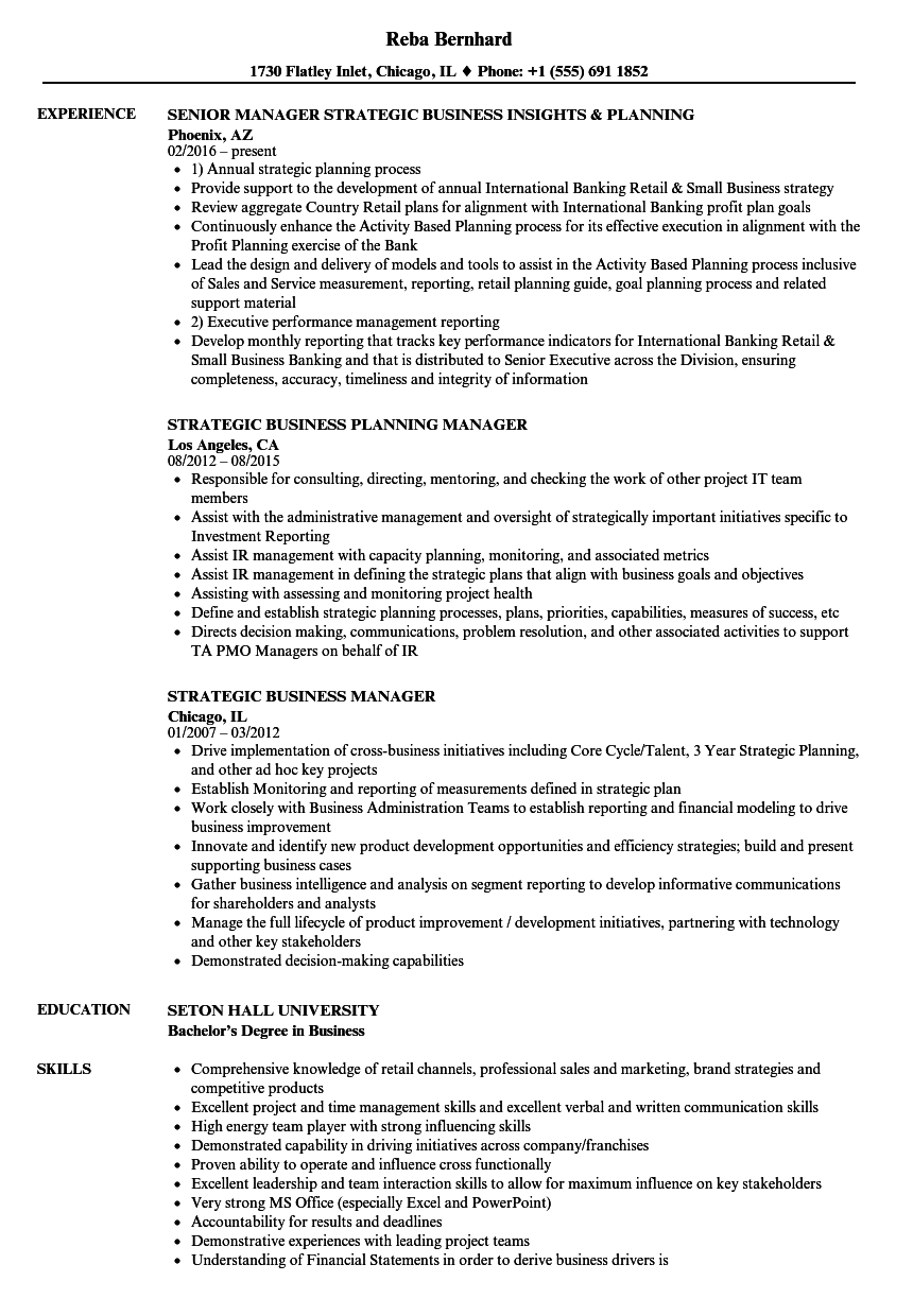strategic business manager resume samples