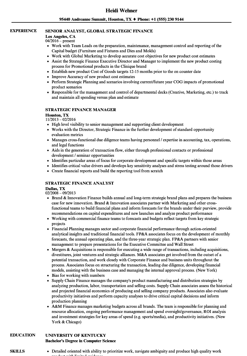 Strategic Finance Resume Samples | Velvet Jobs