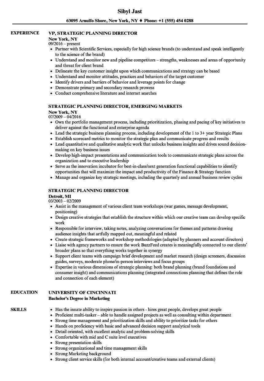 strategic planning director resume samples