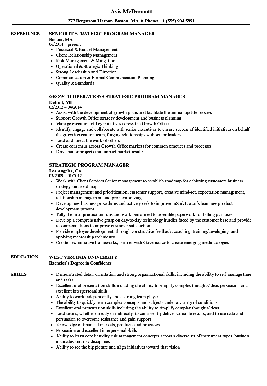 strategic program manager resume samples