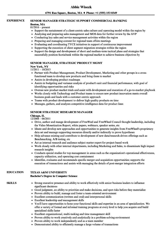 Strategic Senior Manager Resume Samples | Velvet Jobs
