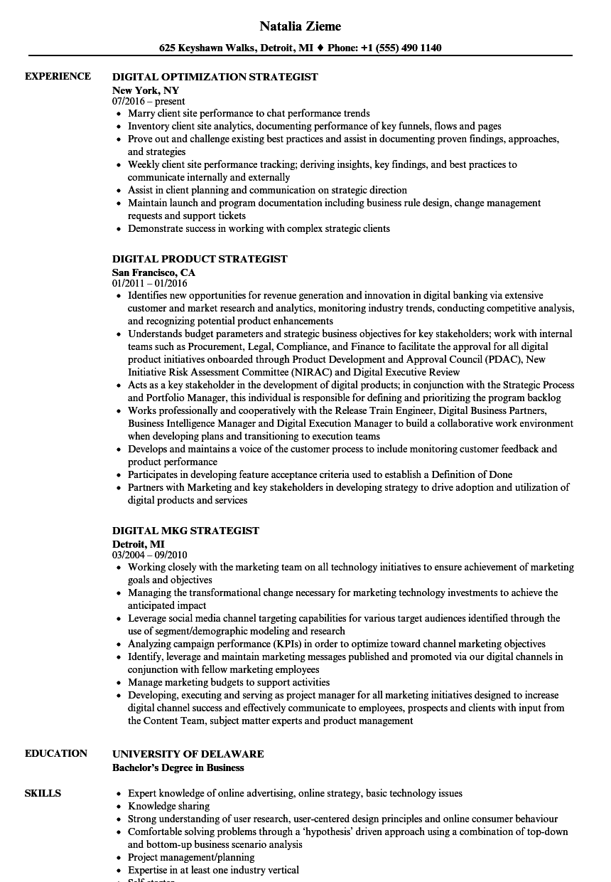 download strategist digital resume sample as image file - Digital Strategist Resume