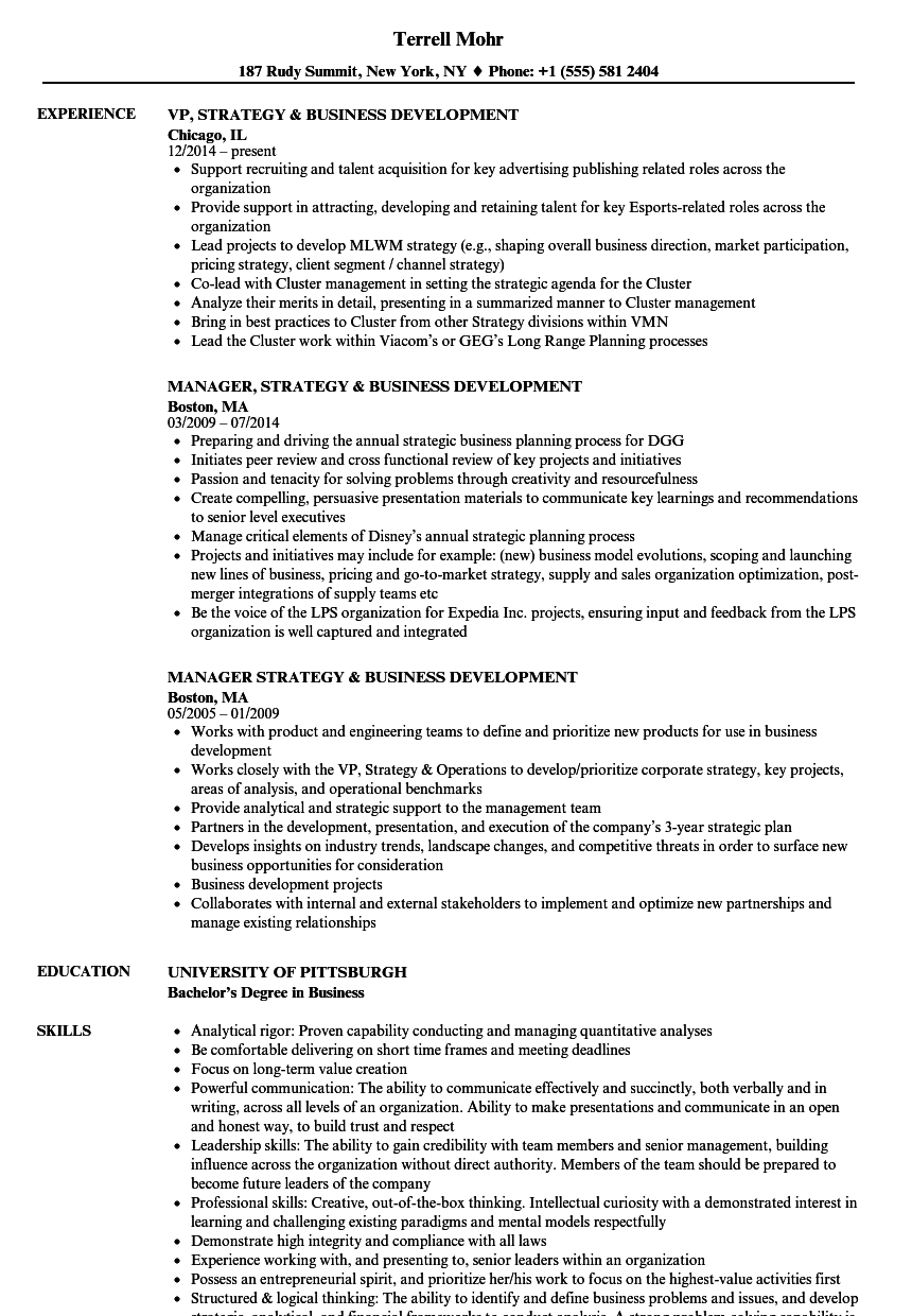 strategy  u0026 business development resume samples