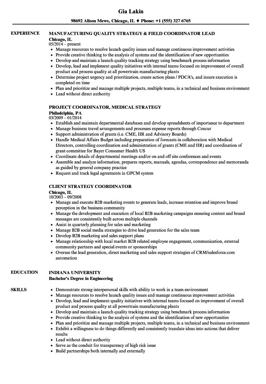 Strategy Coordinator Resume Samples | Velvet Jobs