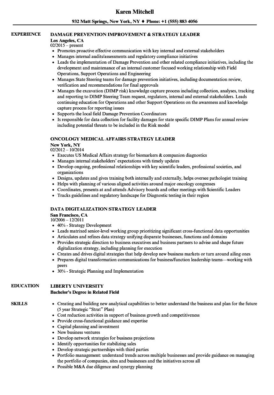 strategy leader resume samples velvet jobs