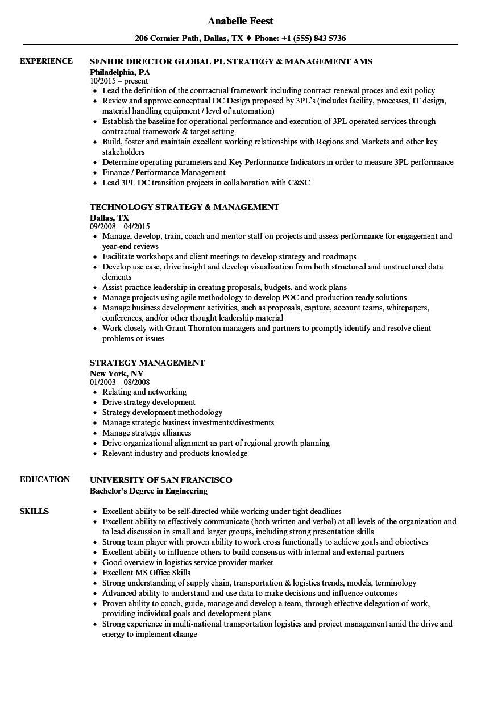 Strategy Management Resume Samples | Velvet Jobs
