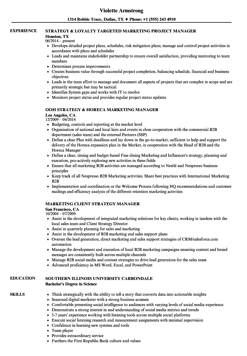 strategy marketing manager resume samples