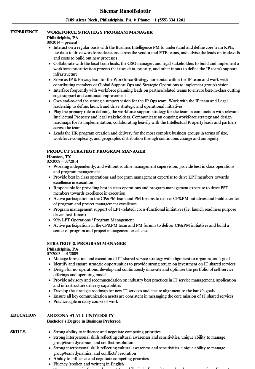 Strategy & Program Manager Resume Samples | Velvet Jobs