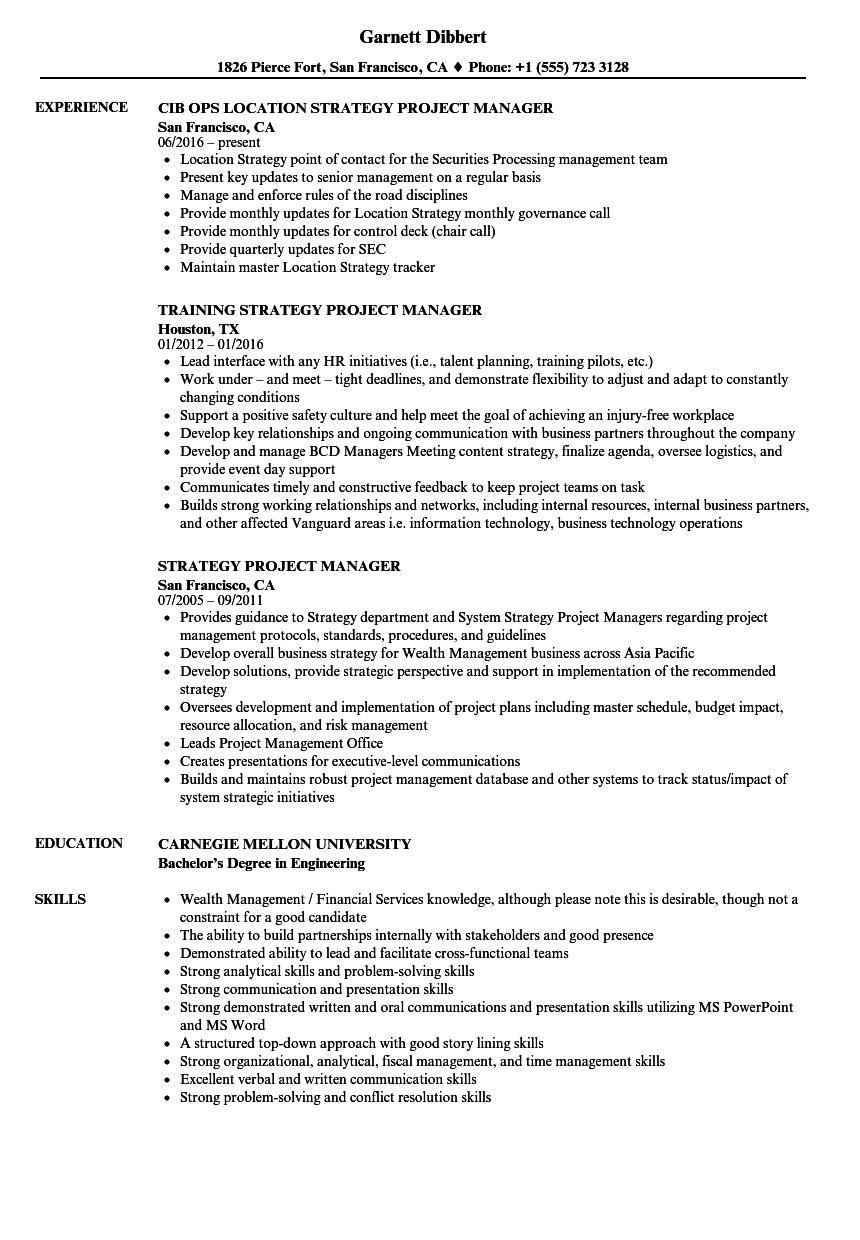 Download Strategy Project Manager Resume Sample As Image File  Project Manager Skills Resume