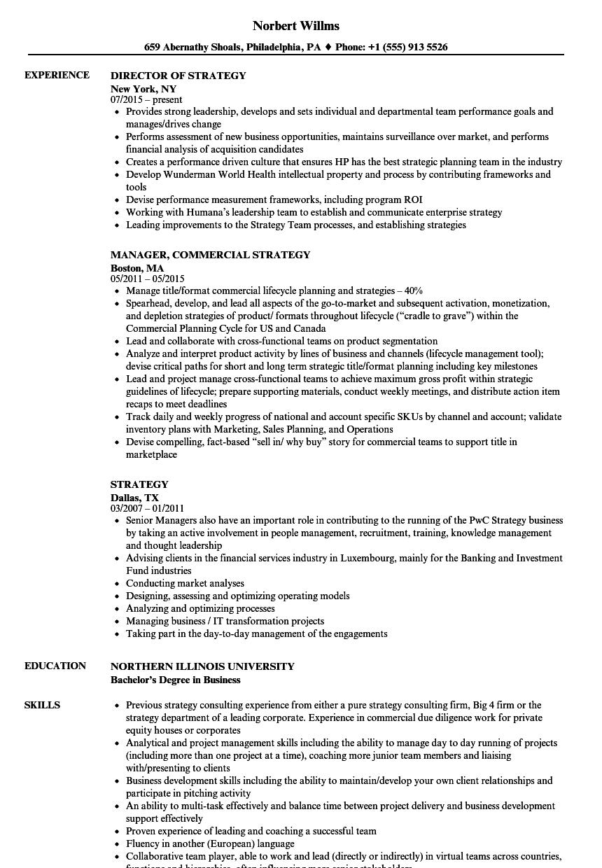 Strategy Resume Samples | Velvet Jobs