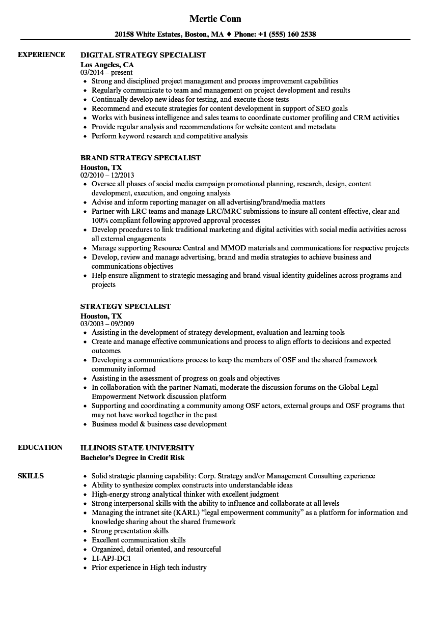 strategy specialist resume samples