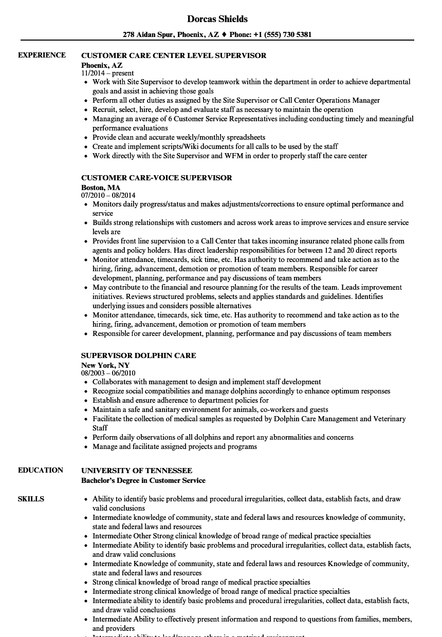 Supervisor, Care Resume Samples | Velvet Jobs