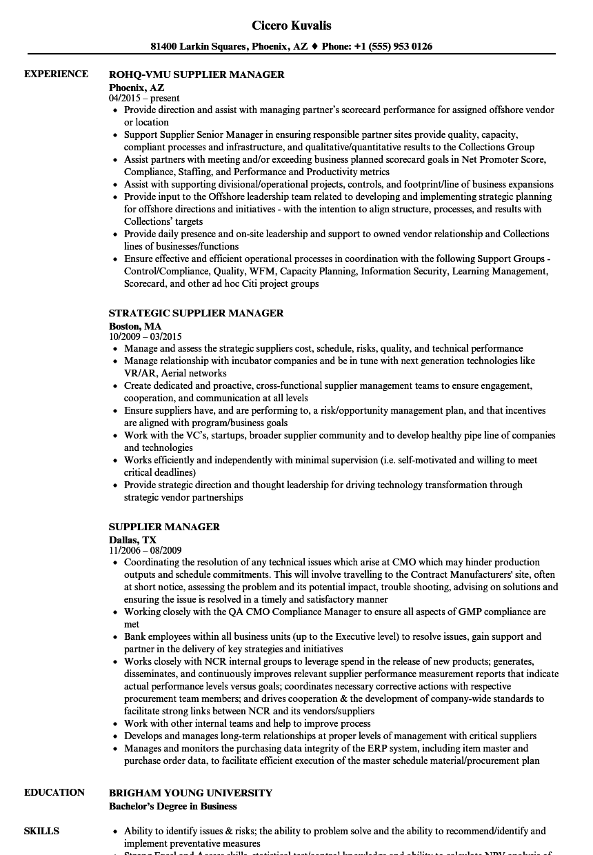 supplier quality auditor sle resume - 28 images - quality auditor ...
