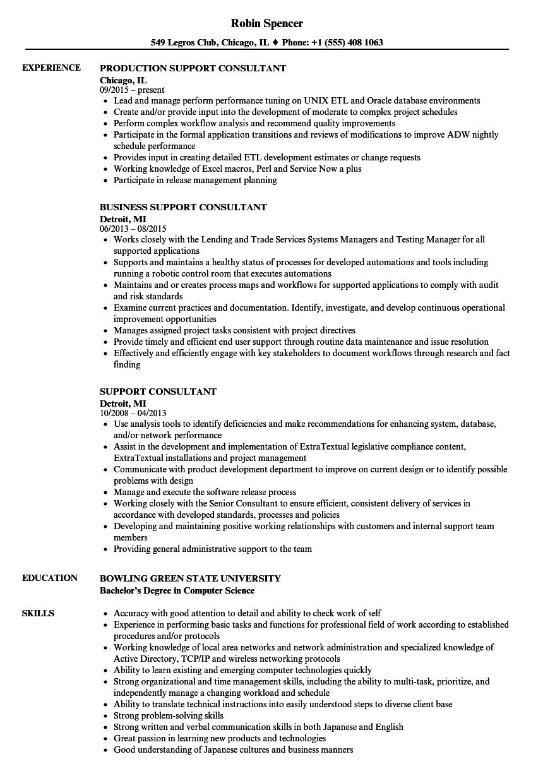 Support consultant Essay Academic Service