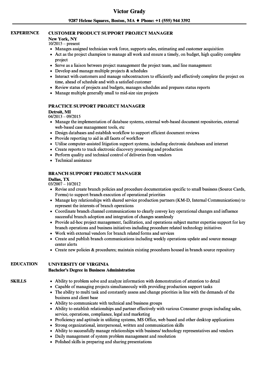 Support Project Manager Resume Samples Velvet Jobs