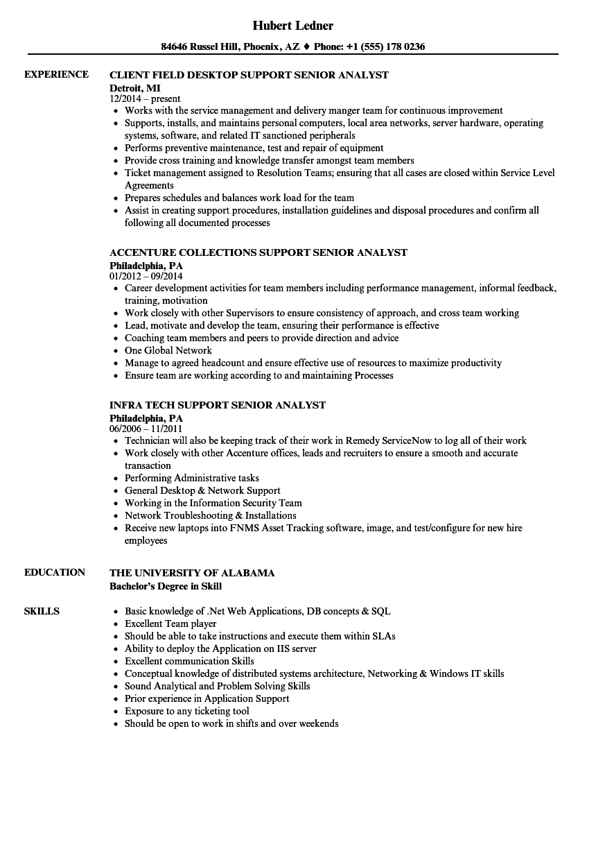 Support Senior Analyst Resume Samples | Velvet Jobs