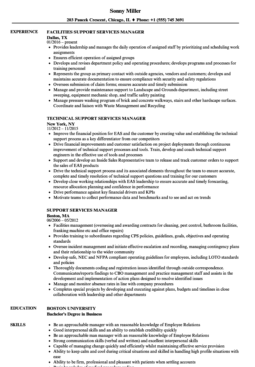 job application for it senior client account manager