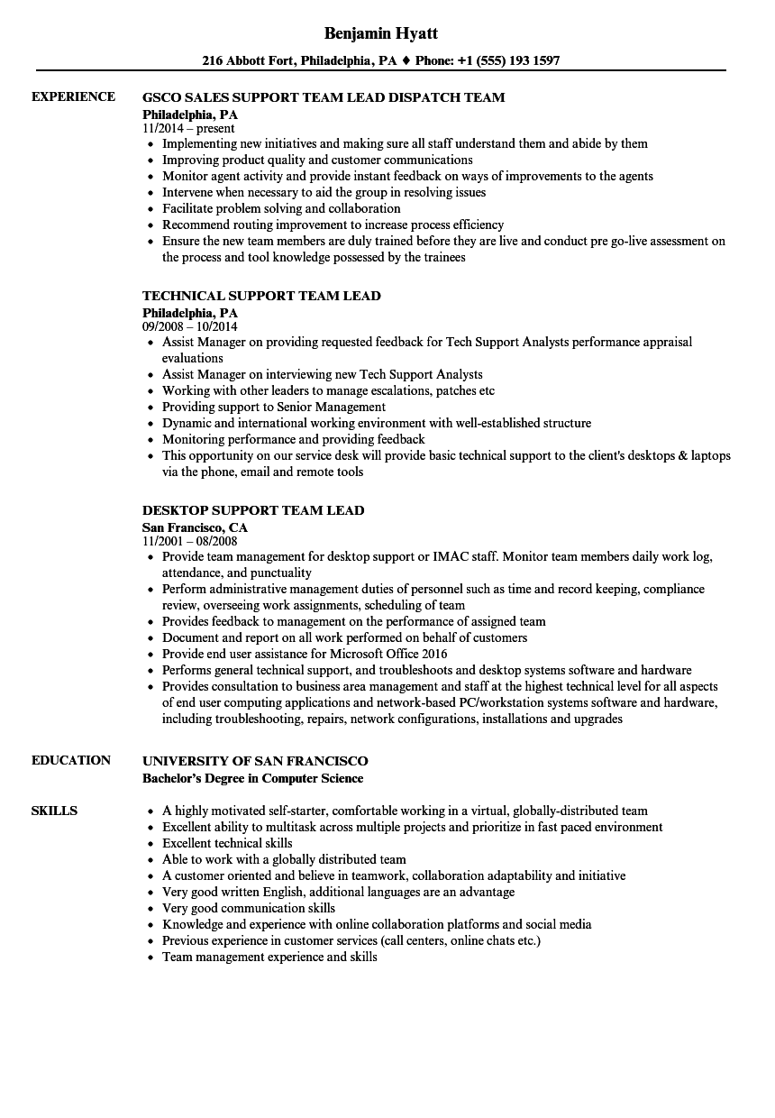 Support Team Lead Resume Samples | Velvet Jobs