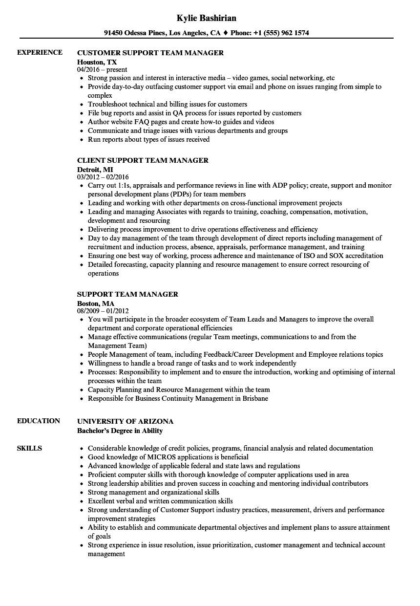 Team manager resume examples