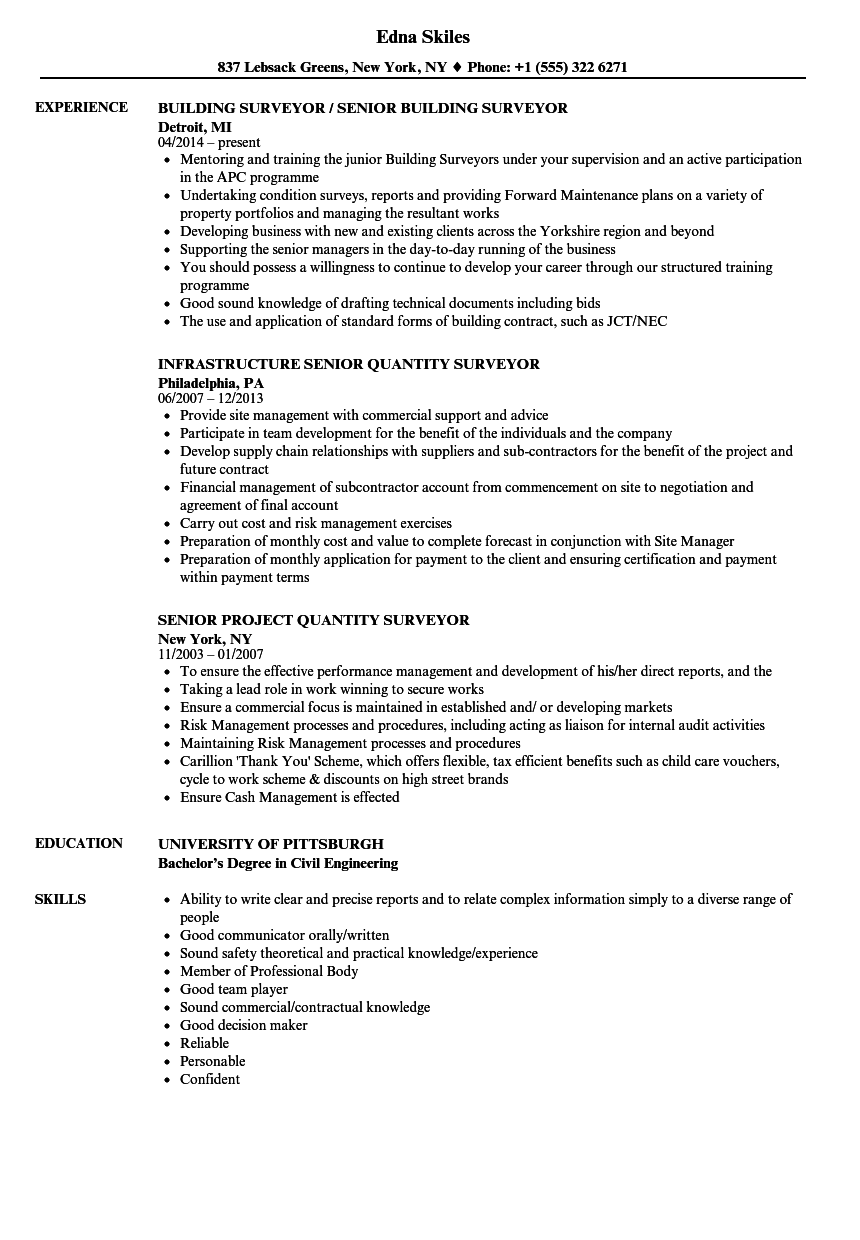 Surveyor Senior Resume Samples