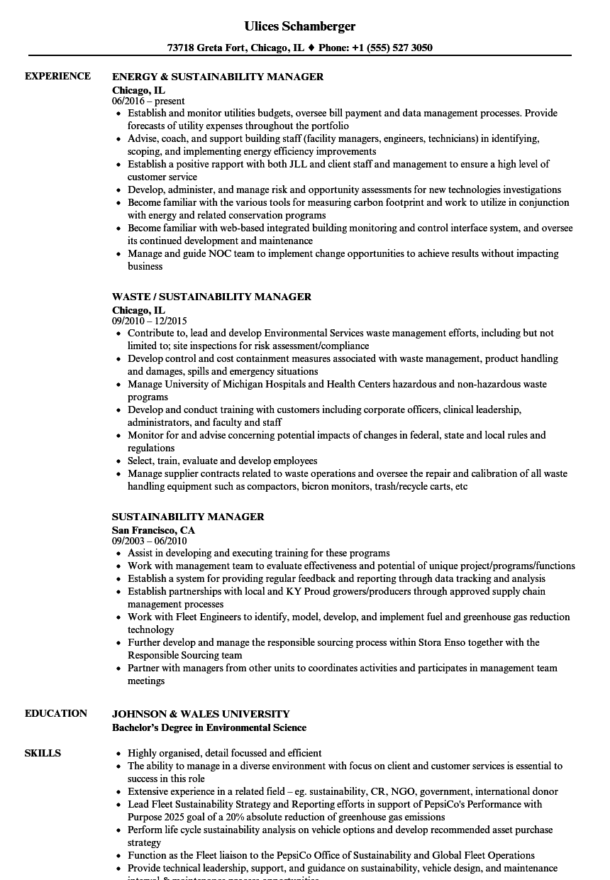 download sustainability manager resume sample as image file - Sustainability Officer Sample Resume