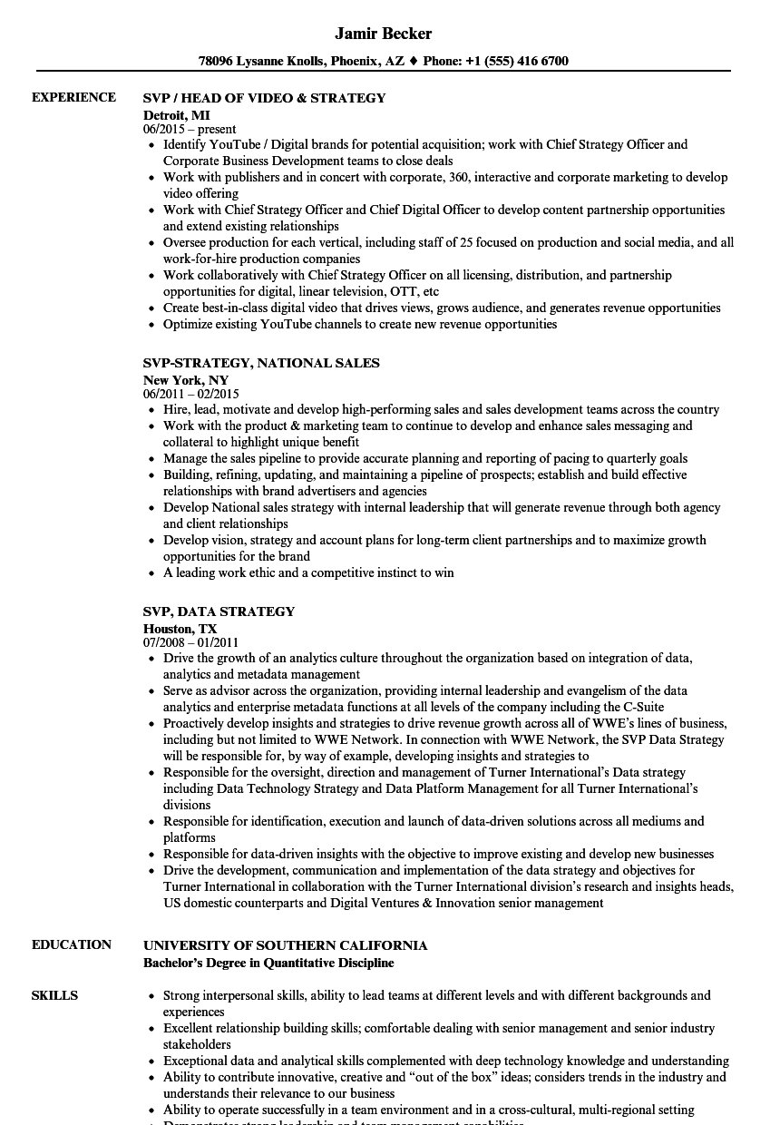 SVP  Strategy Resume Samples   Velvet Jobs