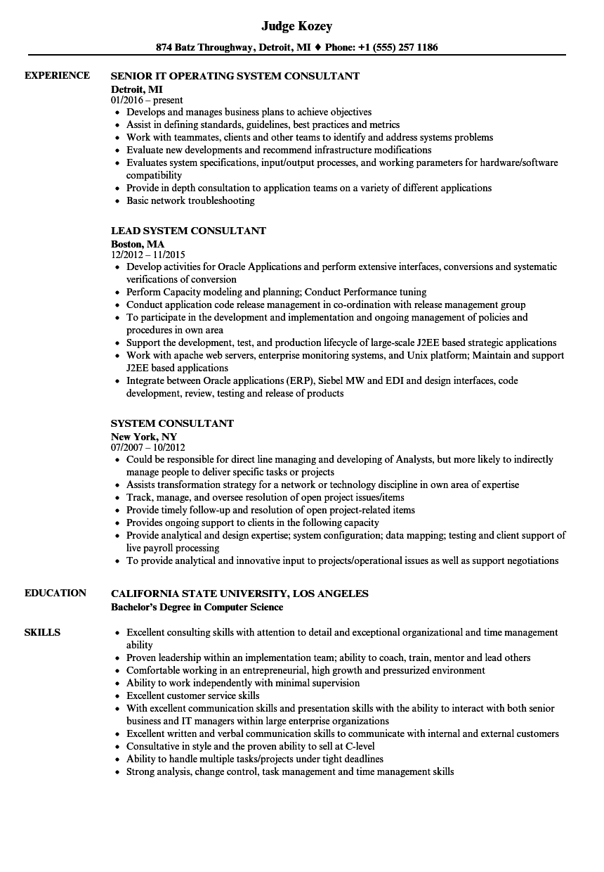 Charming Download System Consultant Resume Sample As Image File