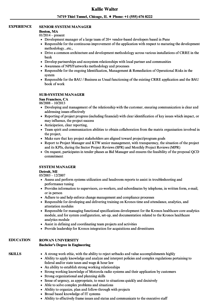 system manager resume samples