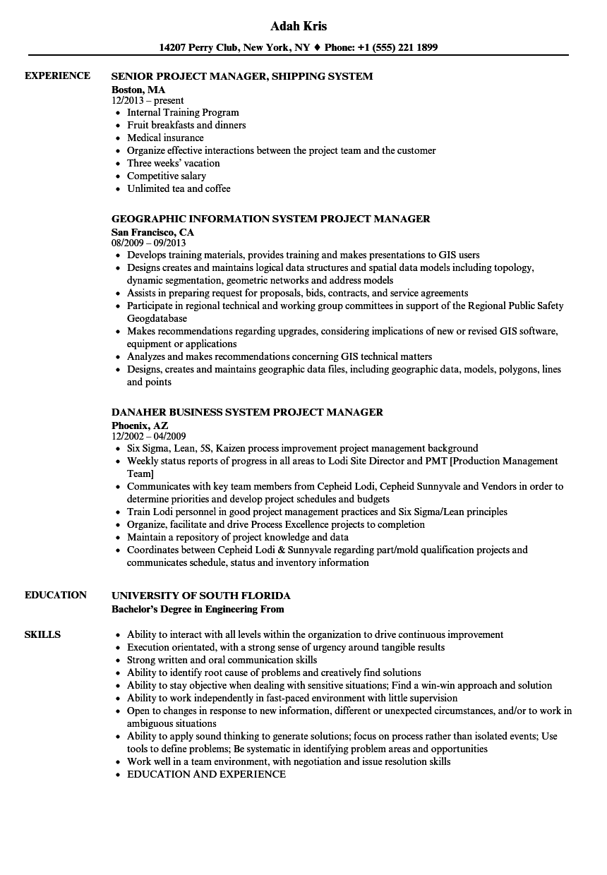 Systems project manager resume geography homework united states