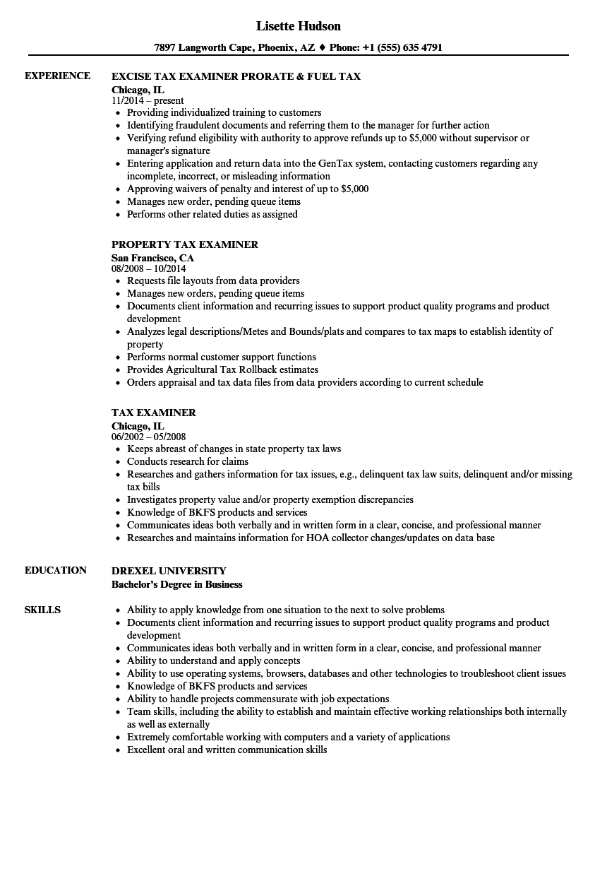 tax examiner resume samples