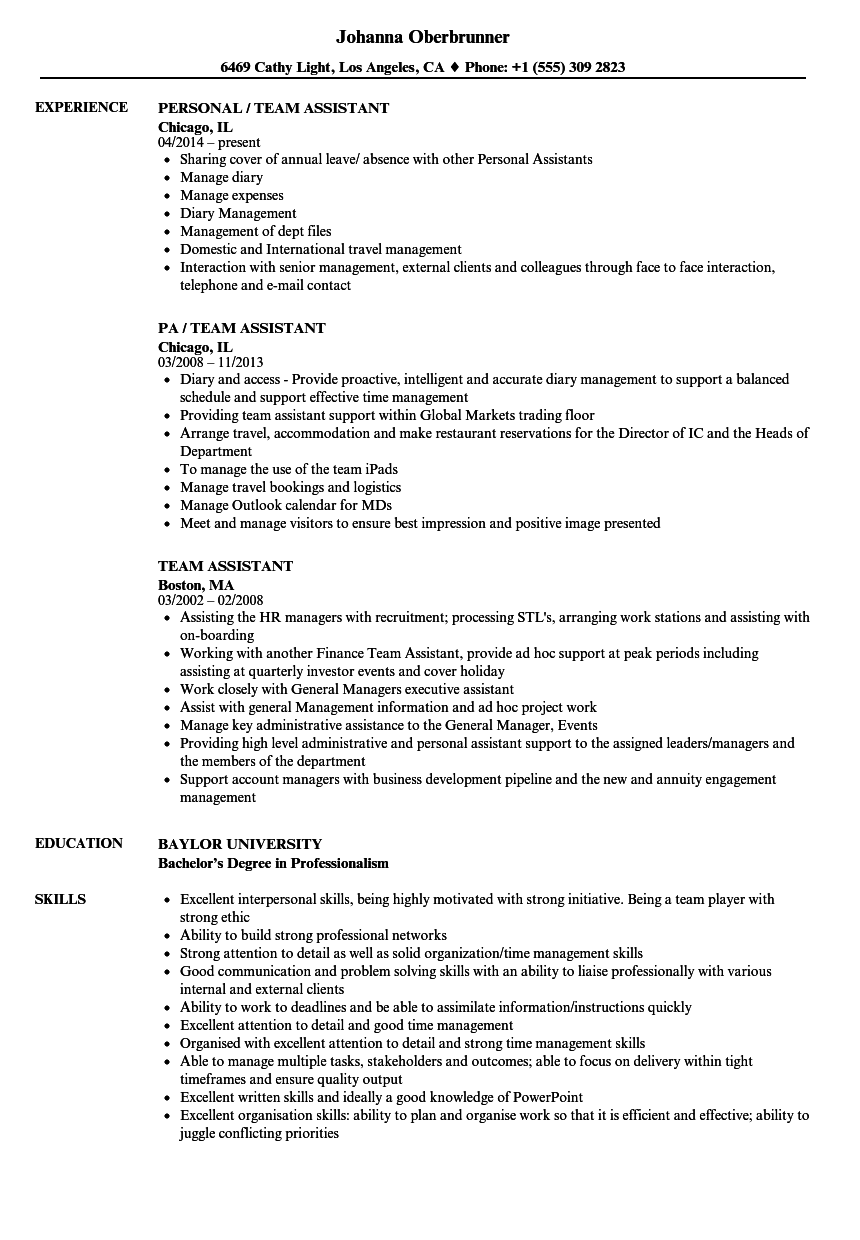 team assistant resume samples
