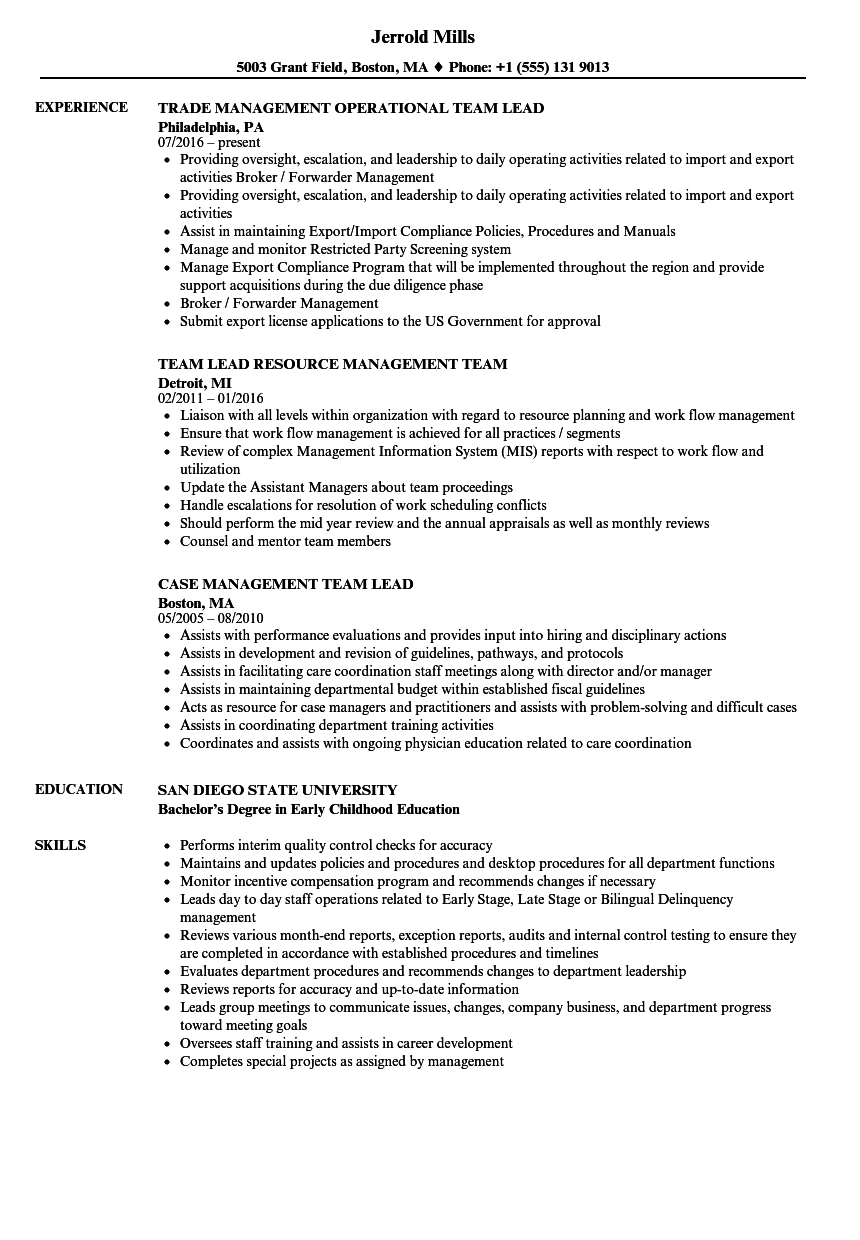 download team lead management resume sample as image file - Management Resume Samples