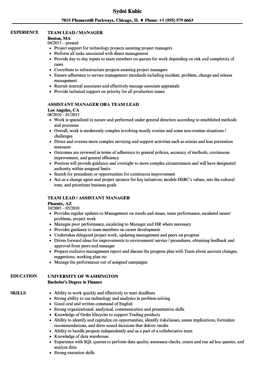 Team Lead Manager Resume Samples Velvet Jobs