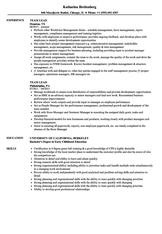 Team Lead Resume Samples | Velvet Jobs