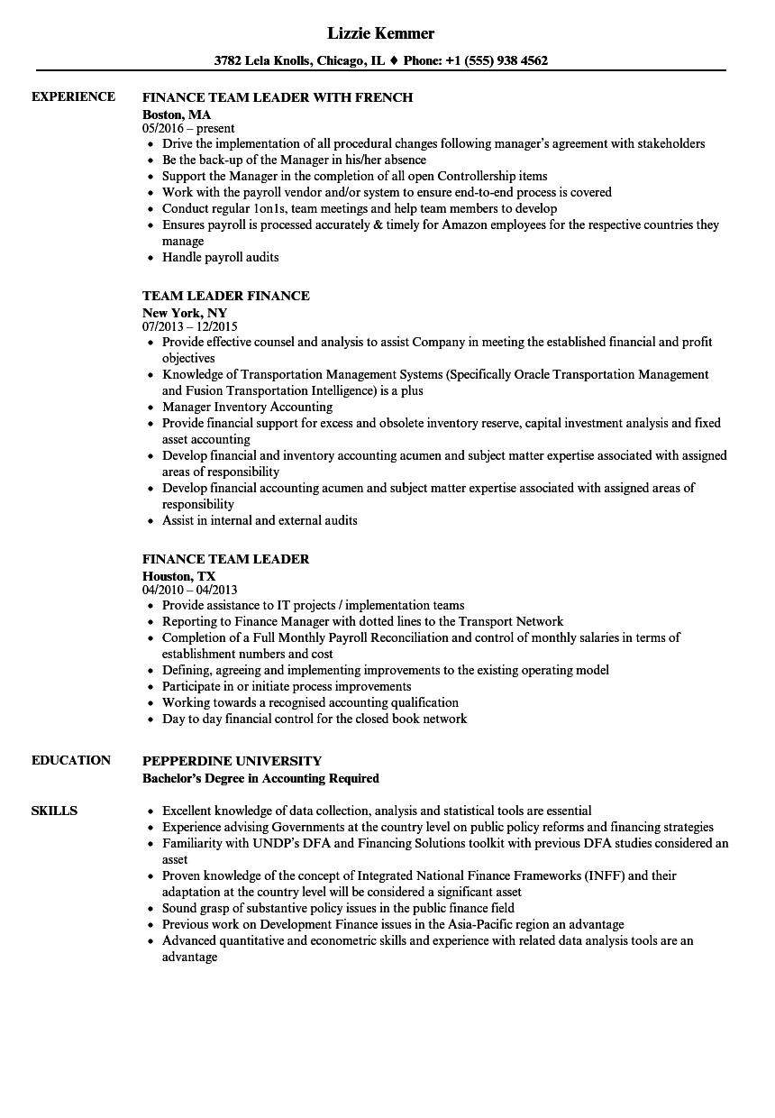 team leader finance resume samples velvet jobs