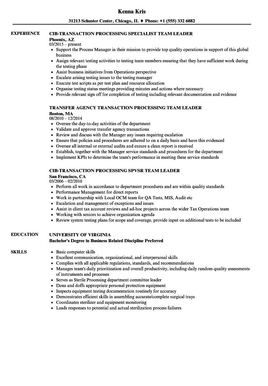 team leader processing resume samples