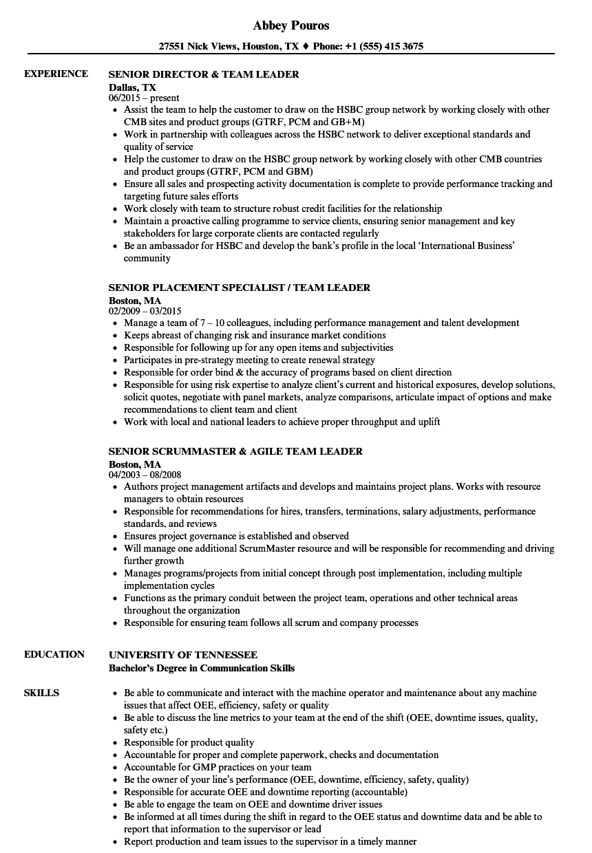 team leader    senior team leader resume samples