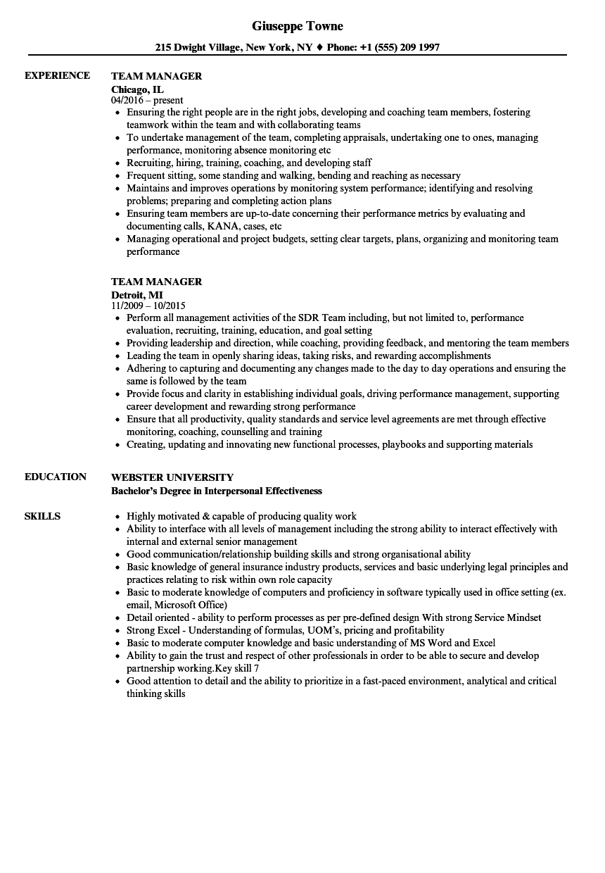 team manager resume samples