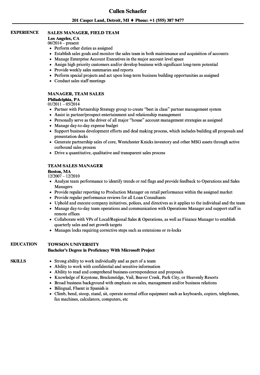 team sales manager resume samples