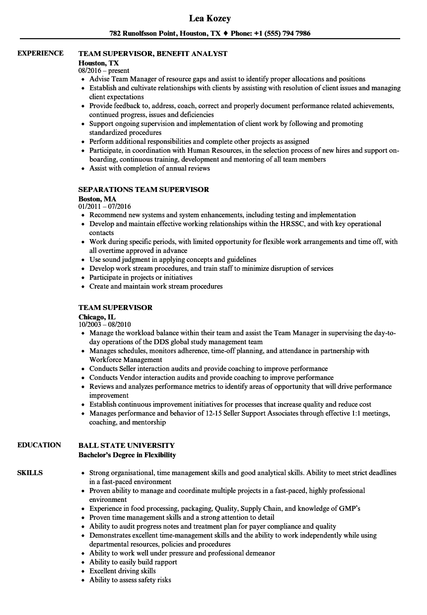 Team Supervisor Resume Samples   Velvet Jobs