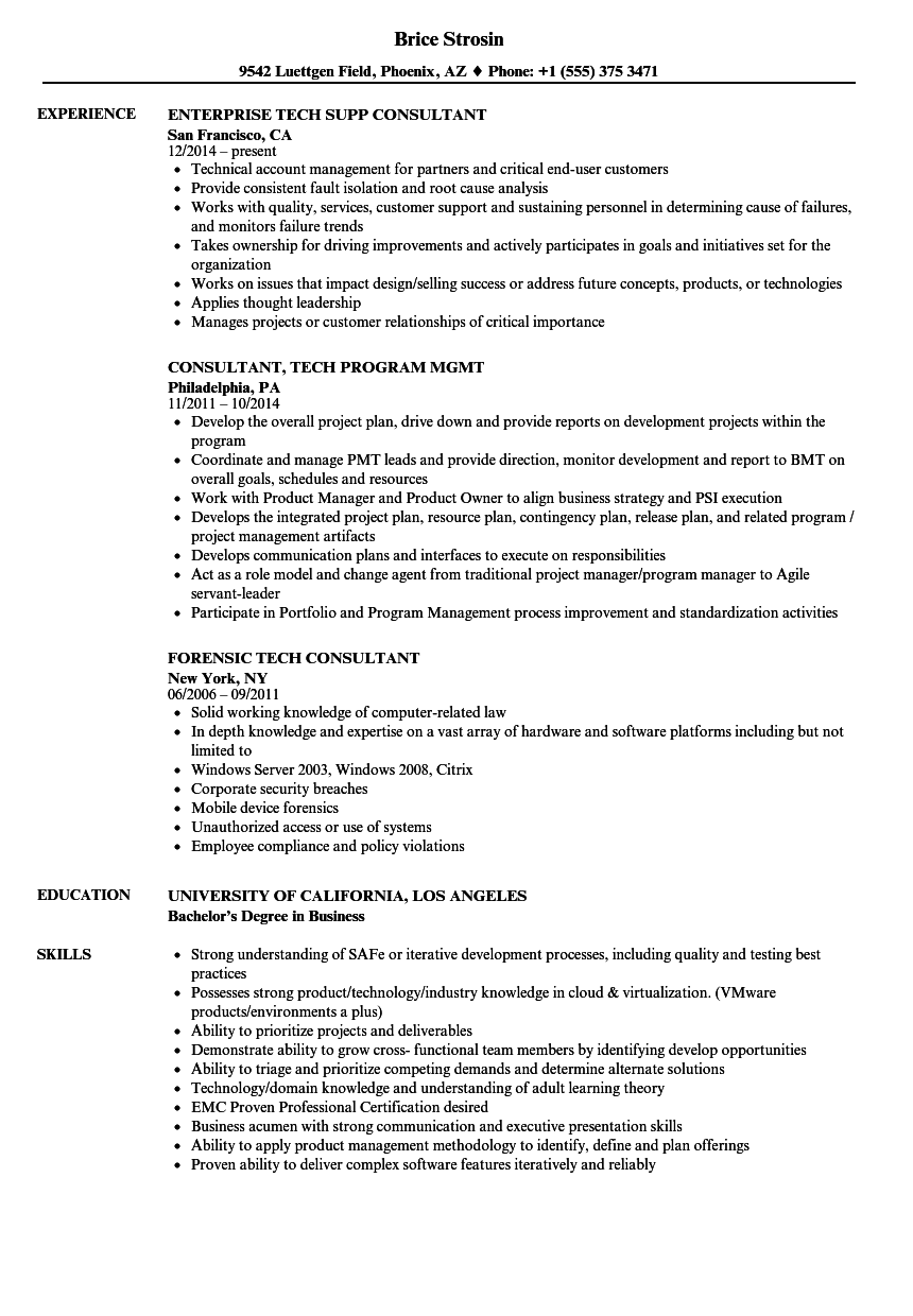 tech consultant resume samples
