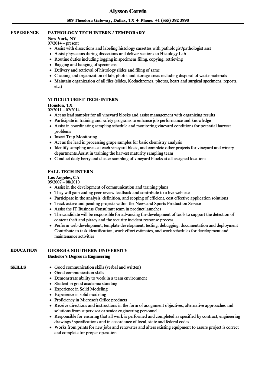 Tech Intern Resume Samples | Velvet Jobs