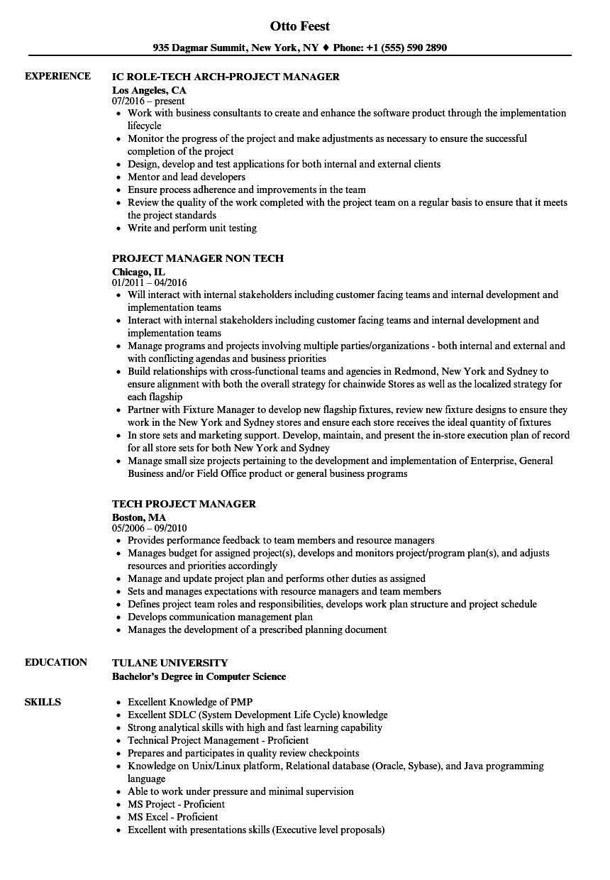 java project manager resumes
