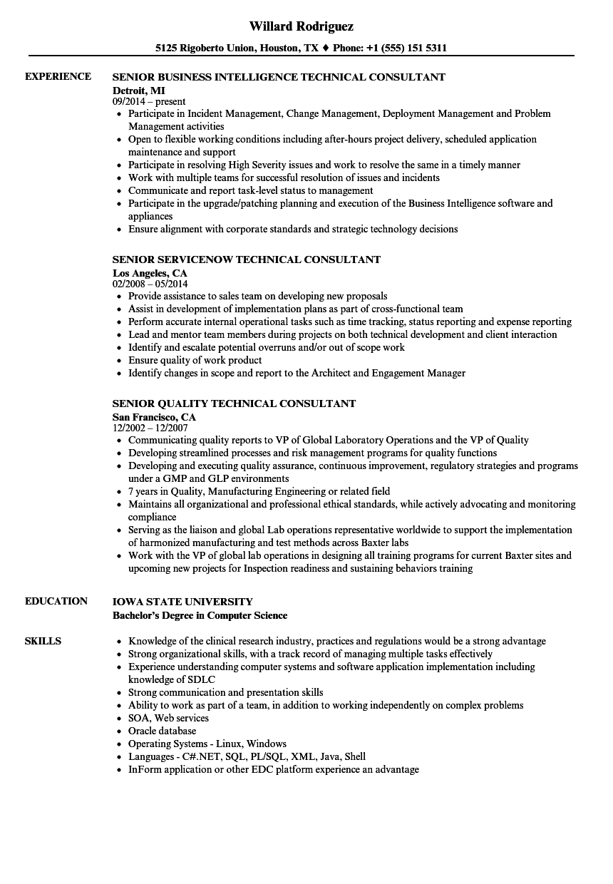Technical Consultant Senior Resume Samples | Velvet Jobs
