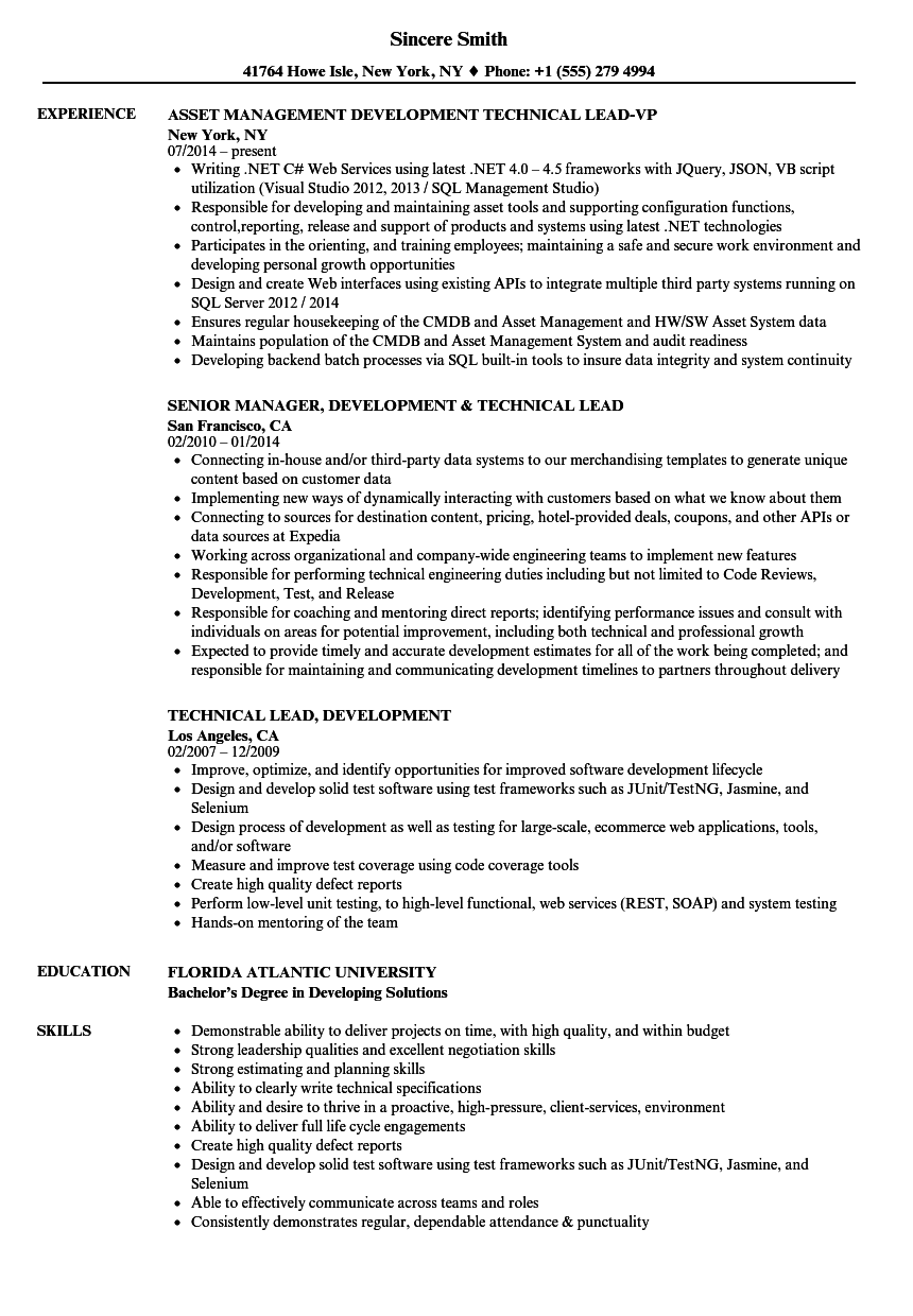 Download Technical Lead, Development Resume Sample As Image File  Technical Lead Resume