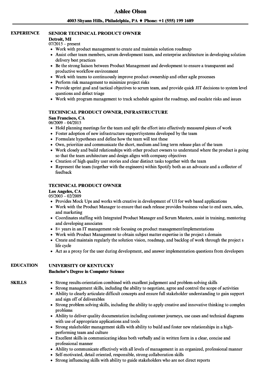 technical product owner resume samples