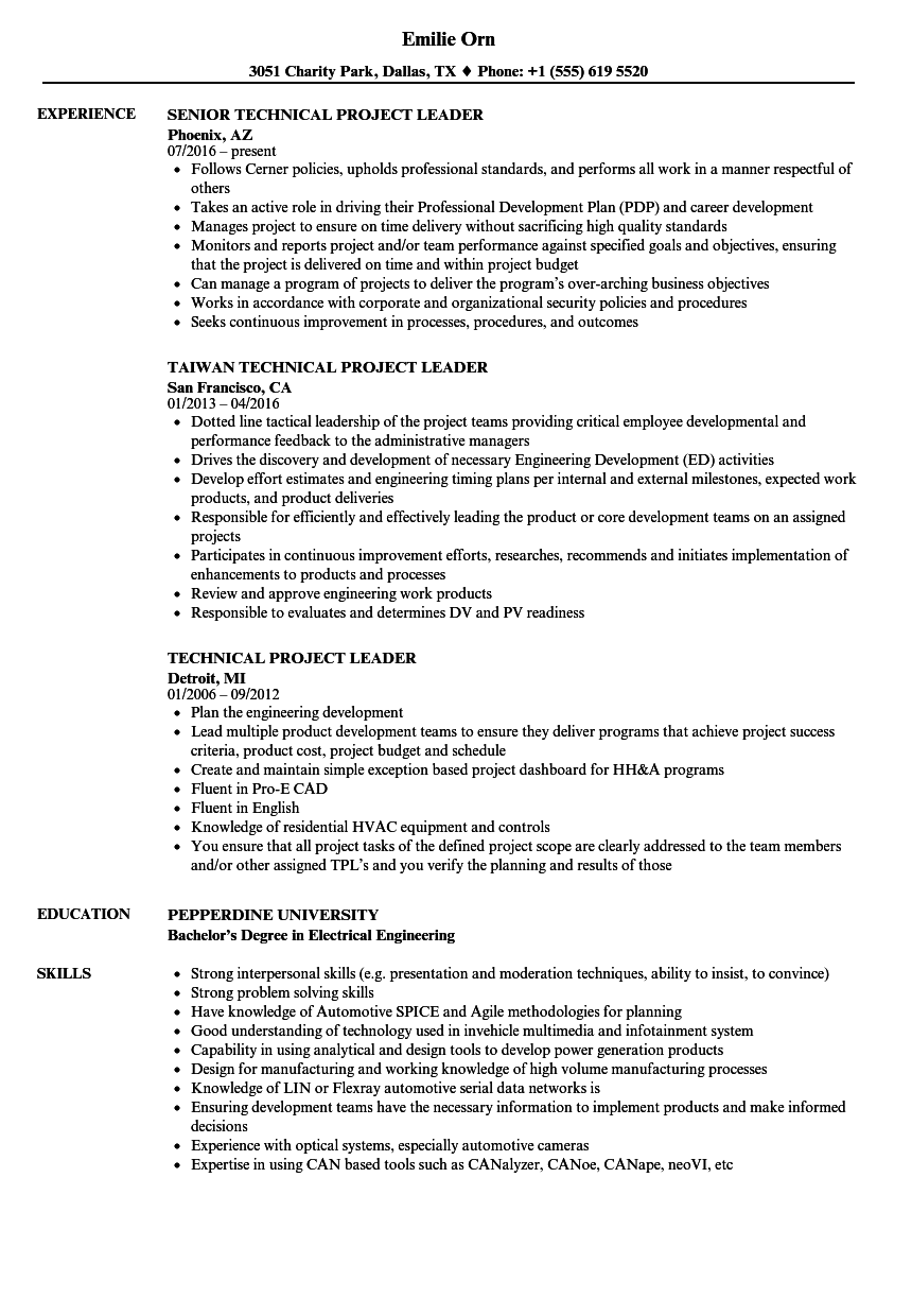 technical project leader resume samples
