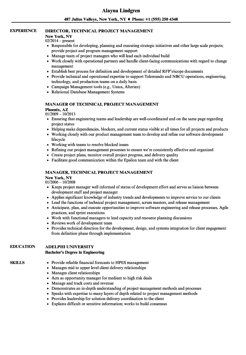 Technical Project Management Resume Samples Velvet Jobs