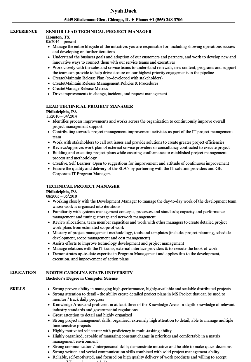 download technical project manager resume sample as image file