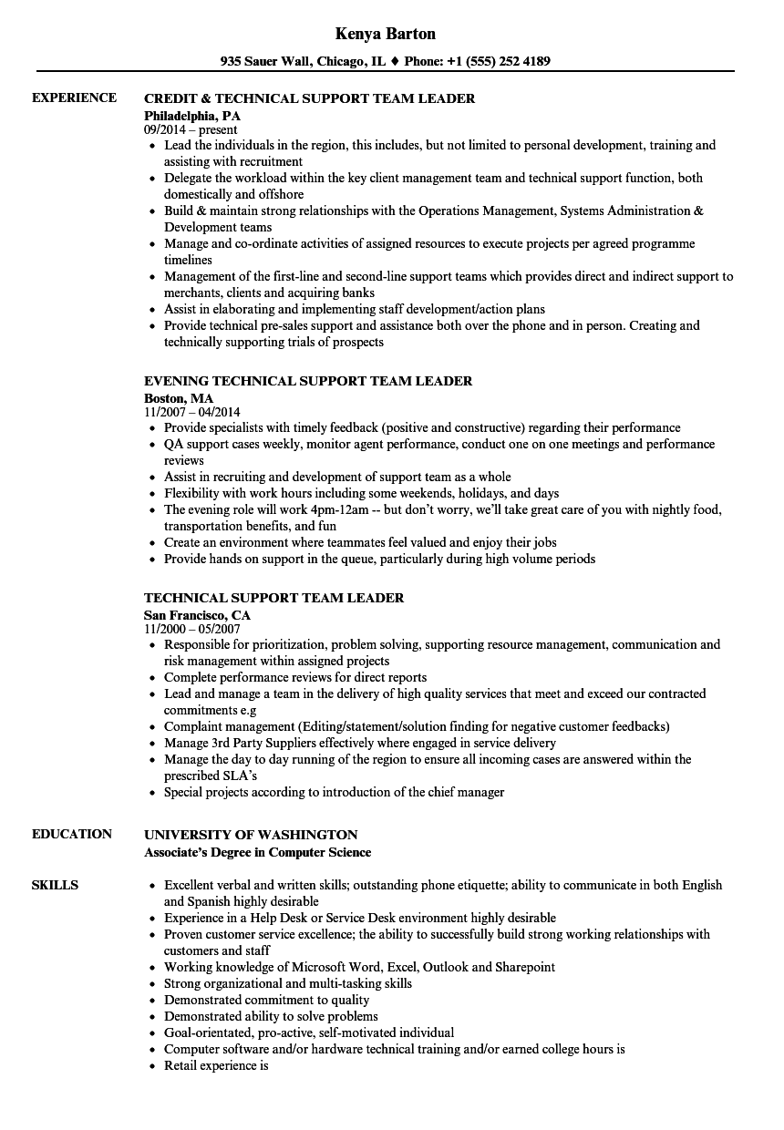 technical support team leader resume samples